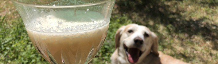 The Pupper Colada For Dogs!  You Can Totally Make This!