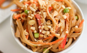 Our International Travel Recipes Start For June With Peanut Pad Thai For Dogs