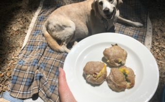 Episode 2 of Sunday Supper For Dogs! Brunch Balls!